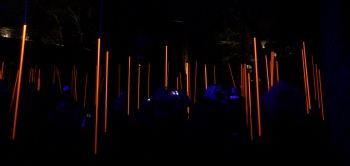 Amsterdam Light Festival 6