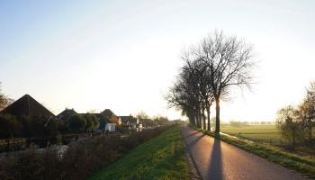 Bemsterringdijk bij Oosthuizen (2)