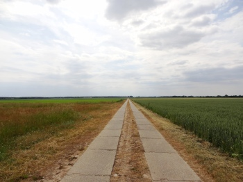 Betonweg in de Börde