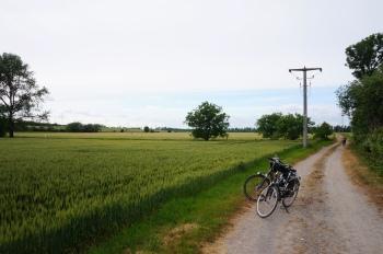 Landschap bij Nienburg