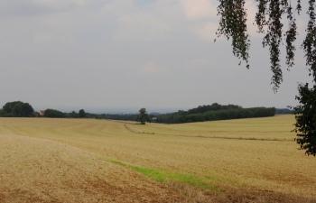 Landschap ten zuiden van Soest